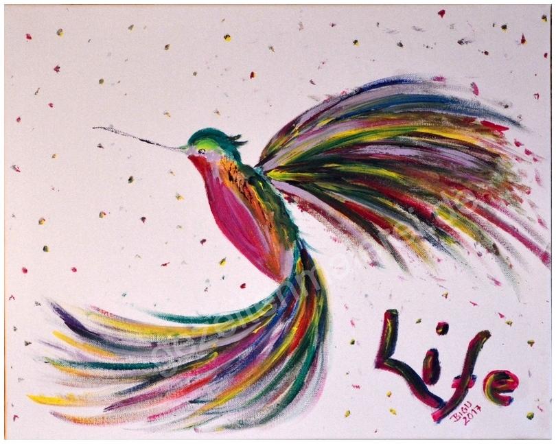 53 Paradiesvogel