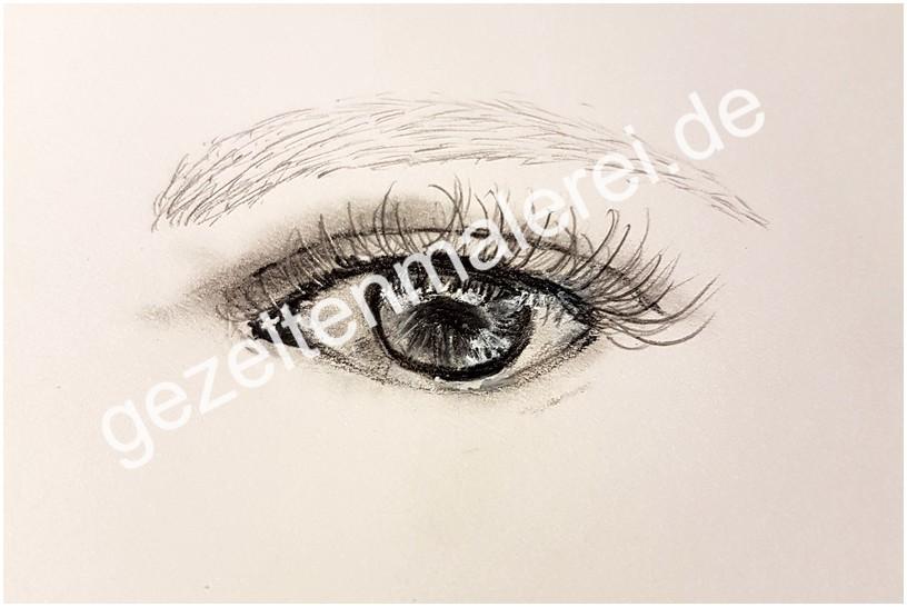 33 Auge